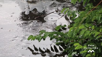 Calm Collective - Deep Storm