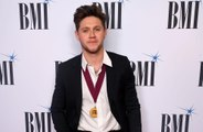 Niall Horan is 'very much single'