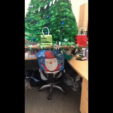 Oregon office employee gets in the festive spirit by topping her desk with Christmas tree