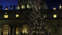 Árvore do Vaticano é inaugurada