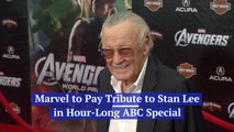 The Stan Lee Special
