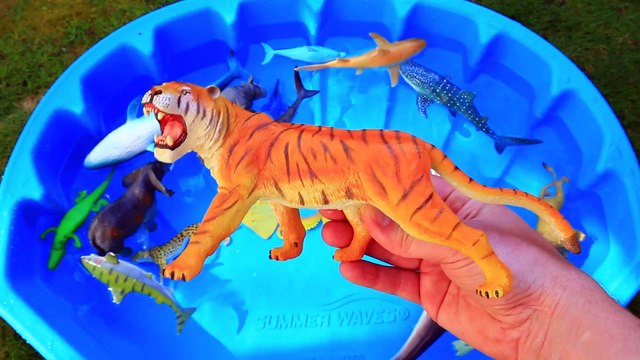 Learn Colors With Sea Wild Animals Blue Water Shark Toys For Kids