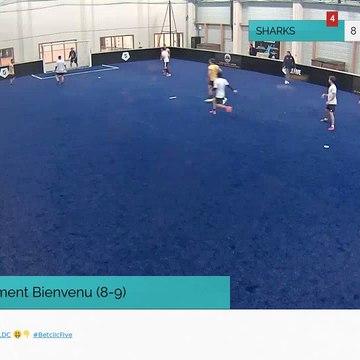 But de Clement Bienvenu (8-9)