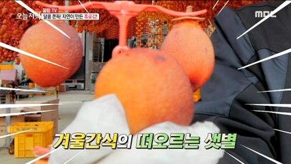 [TASTY] dried persimmons reenacted as autumn snacks, 생방송오늘저녁 20191206