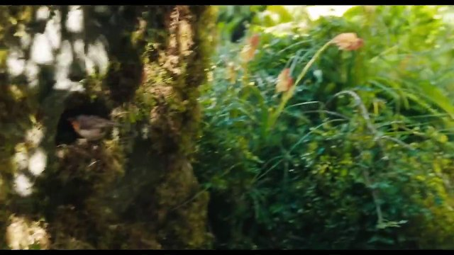 The Secret Garden International Trailer -1 (2020) - Movieclips Trailers