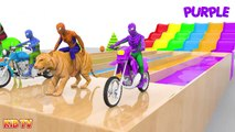 Learn Colors with Spiderman Rides Street Vehicles and Animals Crossover Water Slide for Kids