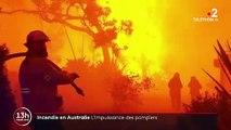 Australie : de gigantesques incendies ont déjà ravagé des millions d'hectares