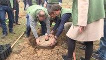 Dirigentes de la COP25 plantan 1.000 árboles en Madrid
