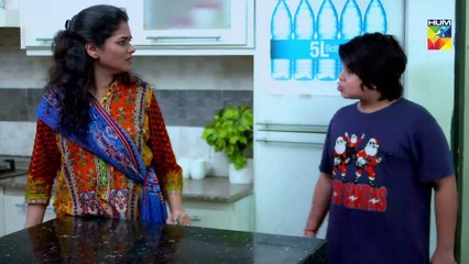 Jadugaryan Episode 12 HUM TV Drama 7 December 2019