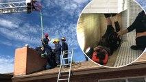 Mauvais Père Noël : sauvetage d'un cambrioleur coincé dans une cheminée