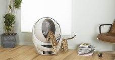 Litter Robot III, la litière autonettoyante qui va changer votre vie et celle de votre chat