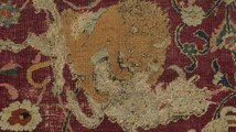 Conserving the Emperor's Carpet
