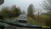 Cars Brake for Pooch in Poland