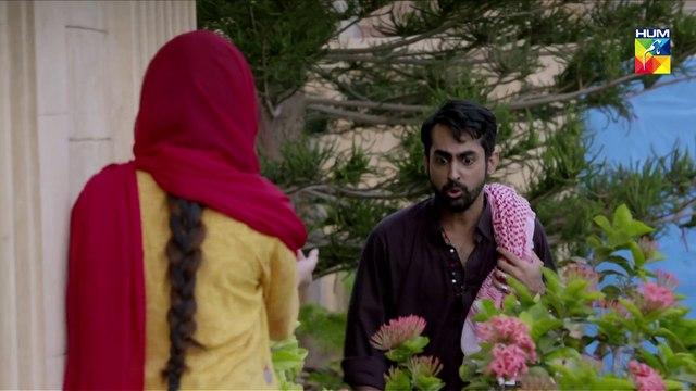 Malaal e Yaar Episode 36 HUM TV Drama 11 December 2019