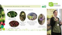 4 - Aurore Mollereau - Rencontres naturalistes 2019