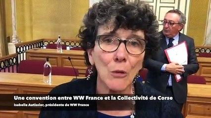 Pollution autour de la Corse : une convention entre WWF France et la Collectivité de Corse