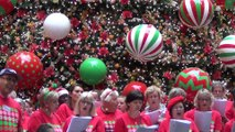 Carols In The City & Christmas Tree  @Martin Place, Canopy of Lights & Vatos De Ley(Hector de Norte) @Pitts St, Lights of Christmas@StMary Cathedral , Christmas Sydney Part 1, 12 Dec 2019