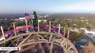 Busch Gardens Puts A Christmas Tree On Top Of Roller Coaster