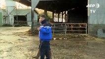 Les gendarmes coachent des agriculteurs face aux intrusions dans les exploitations