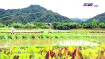 Đại Thời Đại Tập 260 - Phim Đài Loan Tap 261 - THVL1 Lồng Tiếng - Phim Dai Thoi Dai Tap 260