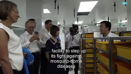 Singapore unveils new mosquito facility in fight against dengue