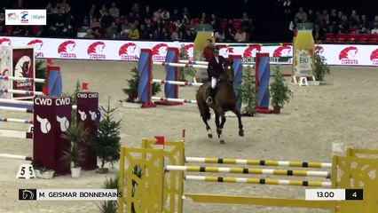 GN2019 | SO_15_Paris | Pro Elite Grand Prix (1,50 m) Grand Nat | Dylan RINGOT | VIVLAVIE UNE PRINCE