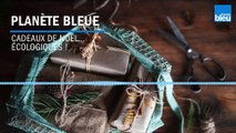 1/10 : Les cadeaux de Noël écologiques