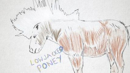 Lowjacked Poney