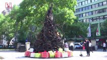 This 'Charlie Brown' Christmas Tree is a Reminder of the Ongoing Wildfires in Australia