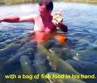 Cet homme est entouré de centaines de gros poissons