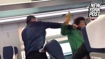 Shady' jerk punches older woman over a train window