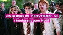 """Les acteurs d""""Harry Potter"""" se réunissent pour Noël"""