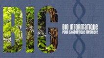 B.I.G : BioInformatique pour la Génétique Médicale