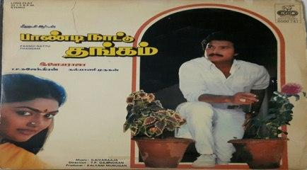 Tamil Superhit Movie|Paandi Nattu Thangam|Karthik|Nirosha