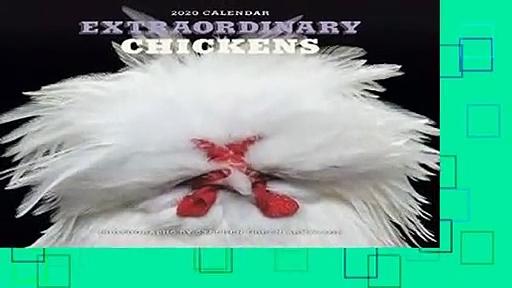 Full E-book  Extraordinary Chickens 2020 Wall Calendar Complete