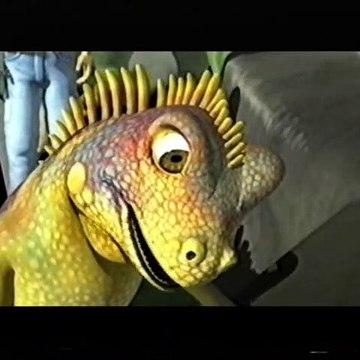 Animalia - Don Iguaani