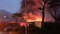 안성 돼지농장서 불...3,600여 마리 폐사 / YTN