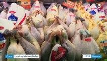 Consommation : un dimanche aux halles Saint-Pierre de Grenoble