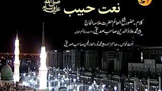 Naat Sharif l Kalam written by Hazrat Pir Allauddin Siddiqui R.A recited by Hazrat Pir Noor ul Arfeen Siddiqui DBA chairman Noor TV UK sajjada nasheen Astana Aliya Nerian Sharif