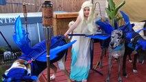Pire déguisement Game of Thrones ? Les chiens remplacement les dragons !
