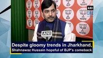 Despite gloomy trends in Jharkhand, Shahnawaz Hussain hopeful of BJP's comeback