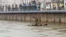 Besançon : le Doubs en crue