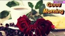 Good Morning Video, Good Morning status, good morning sms, good morning photo,
