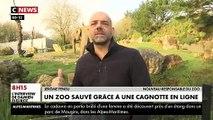 """L'association """"Rewild"""" vient de récolter plus de 600.000 euros pour acheter le zoo de Pont-Scorff, dans le Morbihan et en faire un lieu unique"""