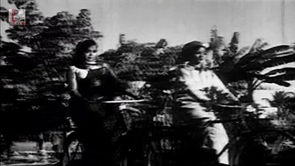 Tamil Dharmam Thalai Kaakkum Movie|Azhagana Vazhai Video Song|M.G.R|B.Saroja Devi
