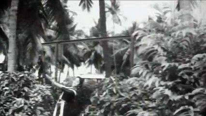 Tamil  Needhikkuppin Paasam Movie|Kaadu Kodutha Kaniyirukku Video Song|M.G.R|B.Saroja Devi