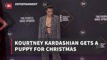 Kourtney Kardashian's Christmas Puppy