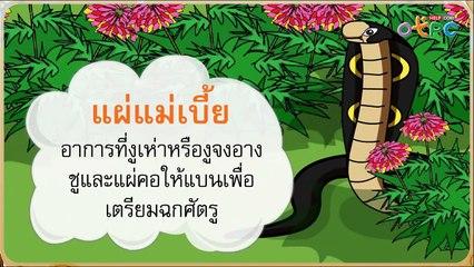 สื่อการเรียนการสอน เกือบไป ป.1 ภาษาไทย