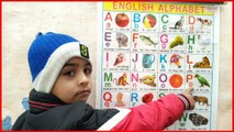 a for apple b for ball,Abcd phonics song for kids | a for apple b for ball | abcd english alphabet song|Abcd chart video, a for apple b for ball c for cat d for dog, apple ball cat dog elephant fish gorilla hat, a for apple b for badka apple, a for apple