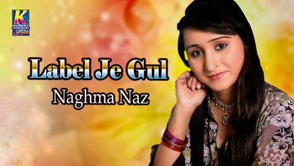 Naghma Naz New Sindhi Song - Label Je Gul Jehro - Sindhi Popular Song
